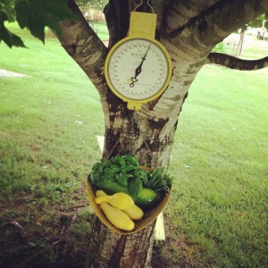 Granddaddy's scale