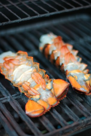 grilled lobster8