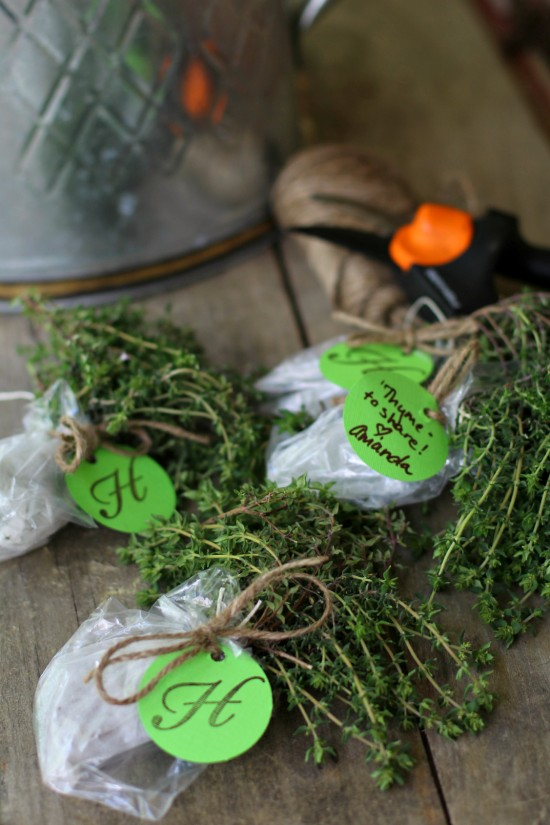 """Thyme to Share"" – Gifting Your Herbs"